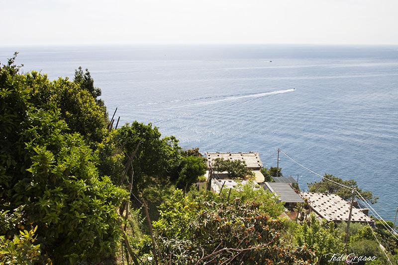 vista_dal_terrazzo